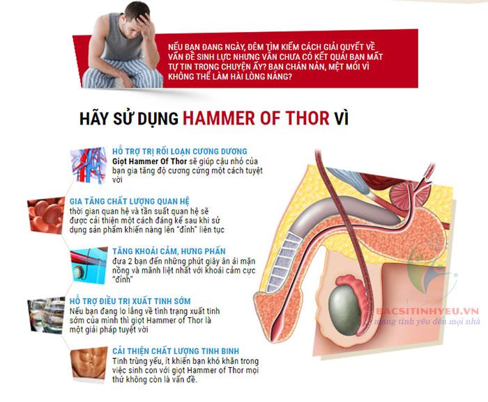 địa chỉ bán thuốc hammer of thor chính hãng